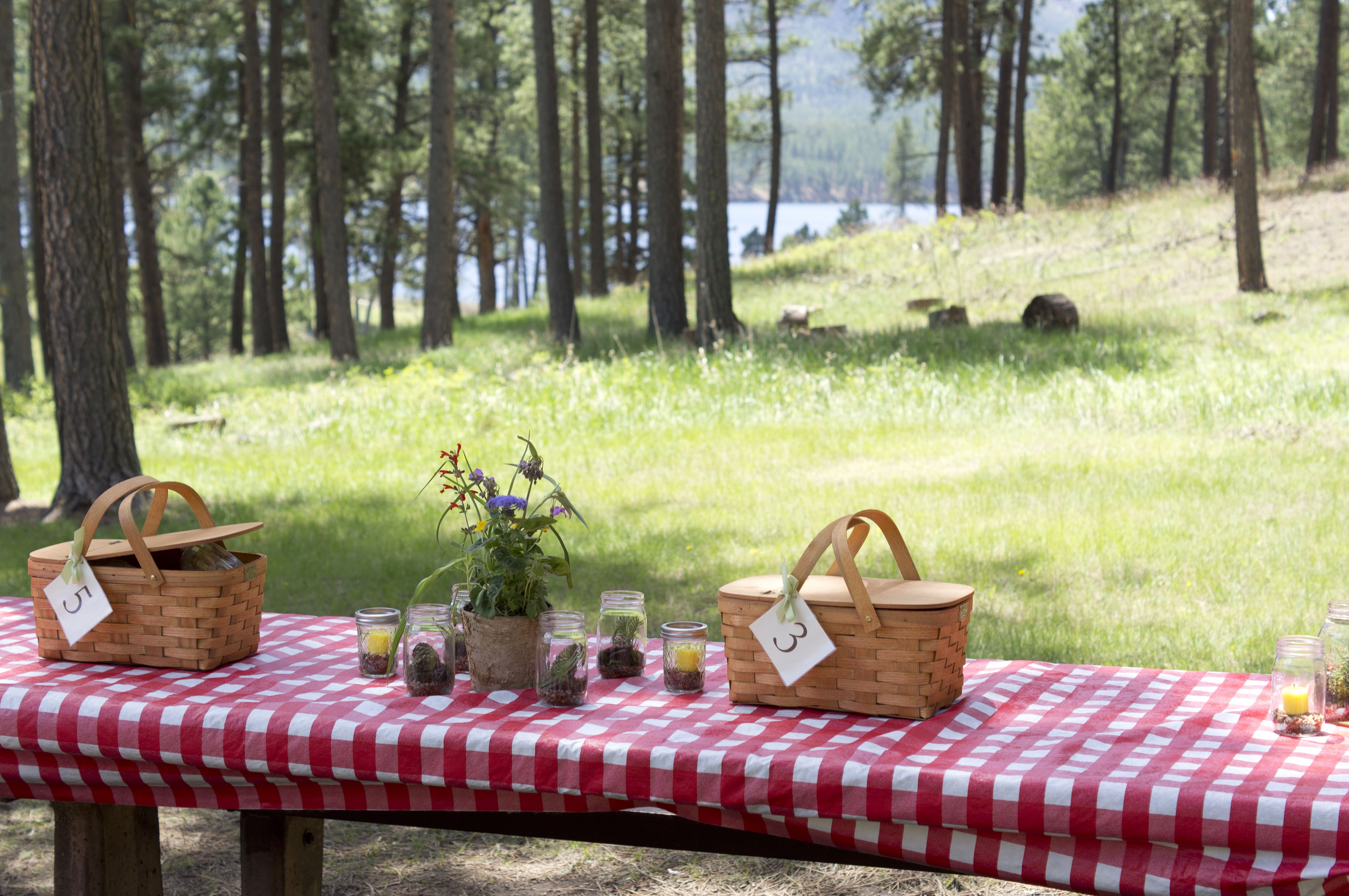 Picnic table with centerpieces my picnic wedding reception pinter