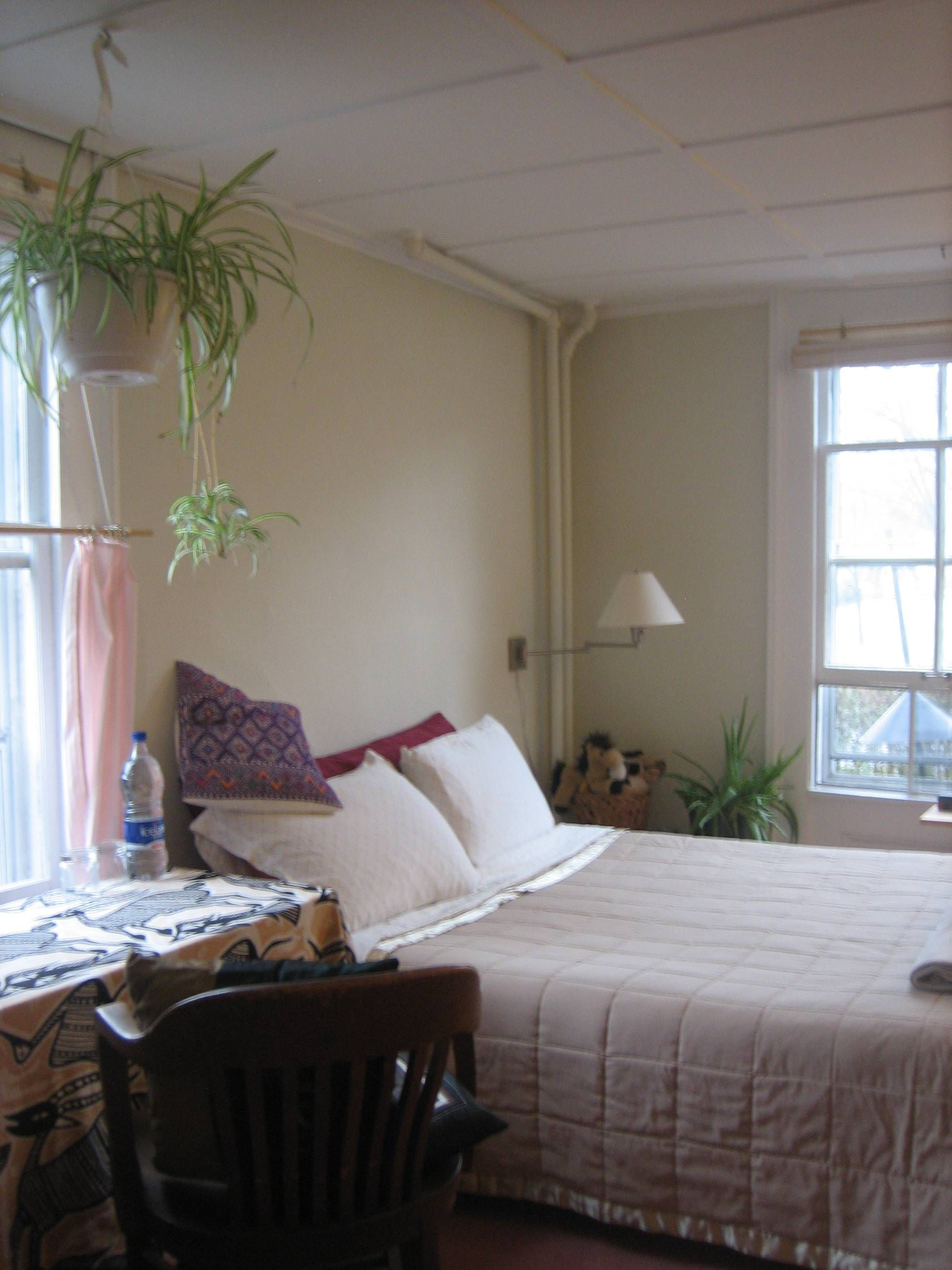Jae s Lovely rooms in beautiful sunny Fall Creek apartment 5