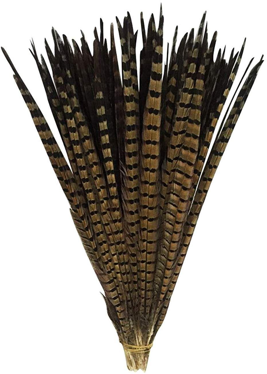 5 à 10cm.Décoration,Bricolage,Créatif,Artisanat Plumes de Faisan Alector Chukar