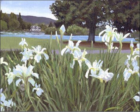 White Iris in Drake Park on Mirror Pond by Joanne Donaca www.joannedonaca.com