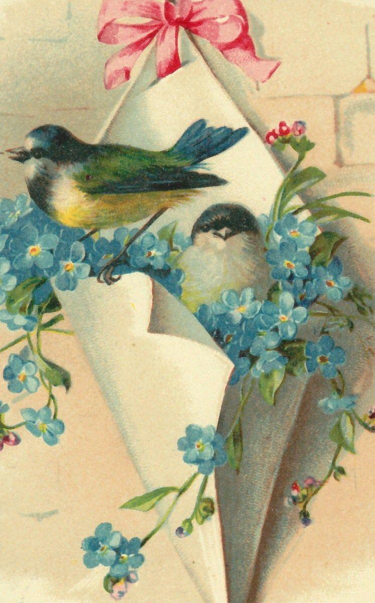 Ретро открытки с птицами, картинках анимациях