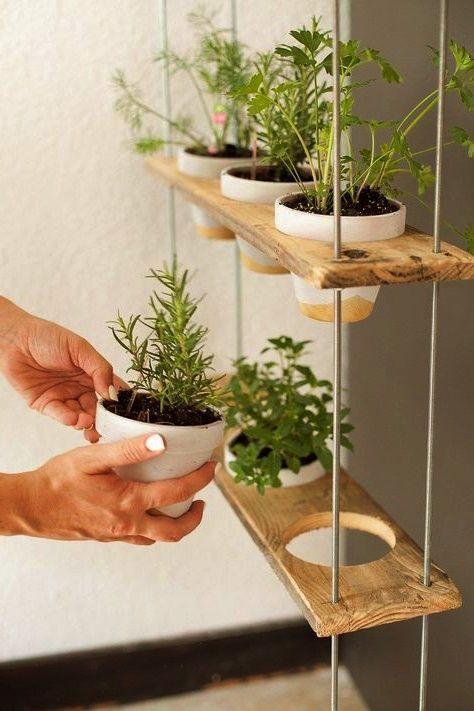 #dekorative #kleine #ideen #knnen #haus #die #sie #ihr #tun #frKleine dekorative Ideen, die Sie für Ihr Haus tun können #kleinekräutergärten
