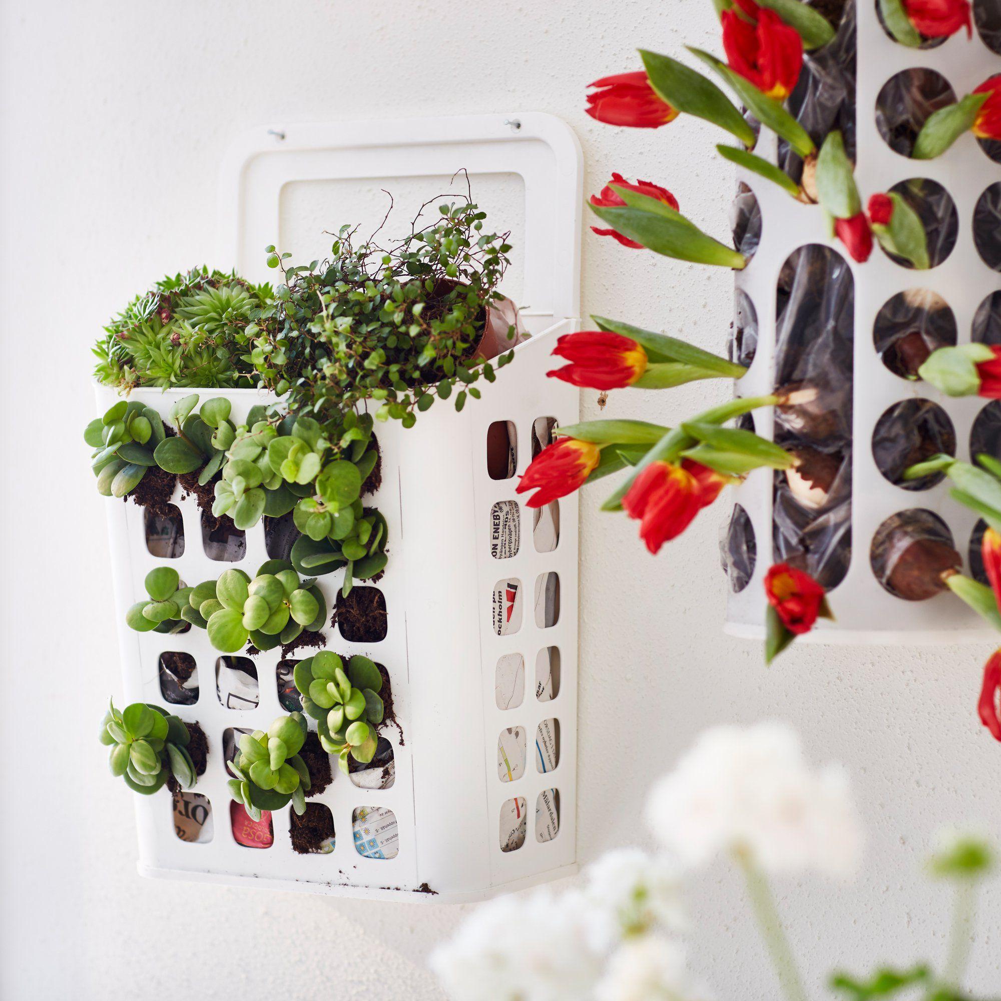 r sultats de recherche d 39 images pour support a plantes ikea jardin pinterest cacti and. Black Bedroom Furniture Sets. Home Design Ideas