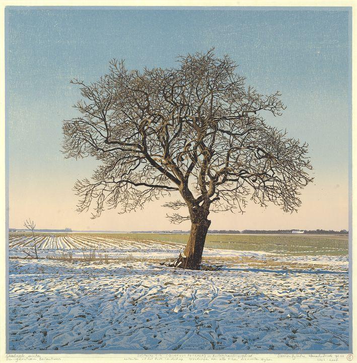 Siemen Dijkstra - Solitaire eik (solitary oak) - 2003-2006 - reduction woodcut