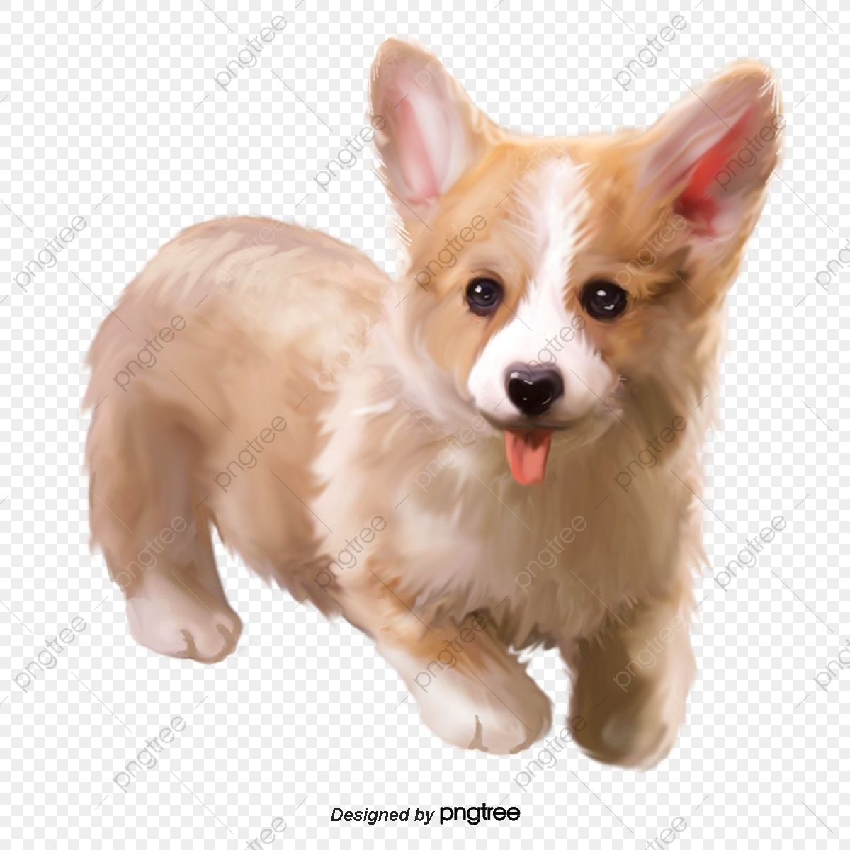 可愛い犬の柔らかい毛のふわふわした犬の元素 かわいいクリップアート 素子 動物画像とpsd素材ファイルの無料ダウンロード Pngtree 可愛い犬 可愛いワンちゃん 犬