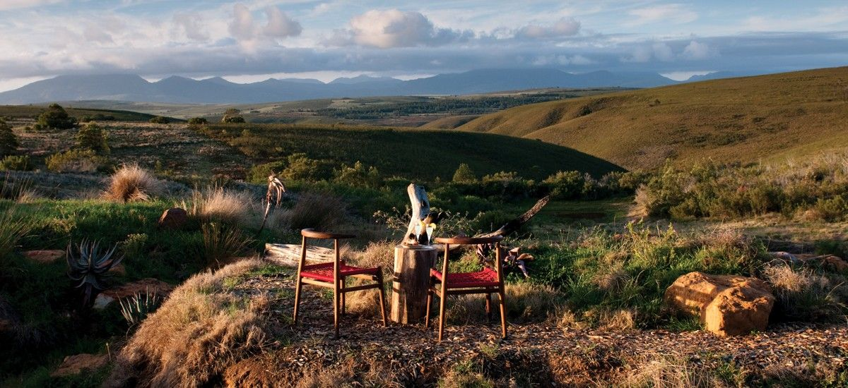 Gondwana Private Game Reserve Western Cape Garden Route