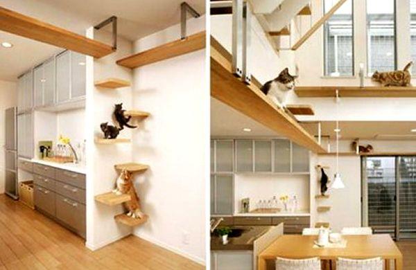 Decoración de interiores para mascotas decoración Pinterest