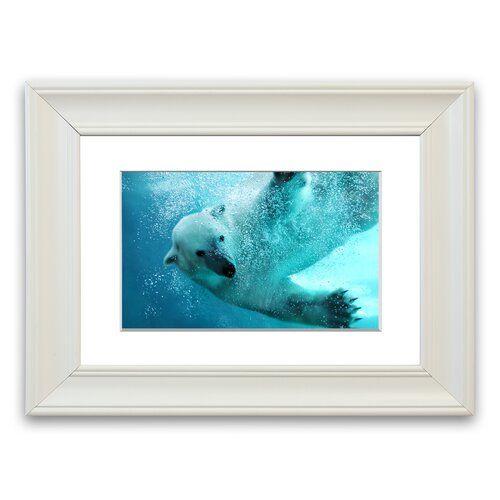 Photo of Gerahmter Fotodruck Polar Bear Swim East Urban Home Größe: 30 cm x 40 cm, Rahmenart: Weiß