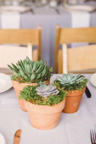 15 Wedding Centerpiece Container and Vessel Ideas: Ceramic pots {Oldani Photography}