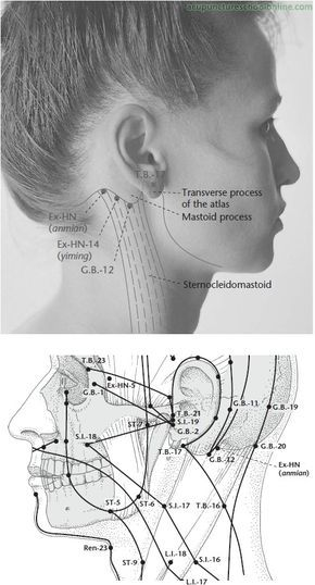 Download Yamamoto New Scalp Acupuncture Ynsa Ebook Login