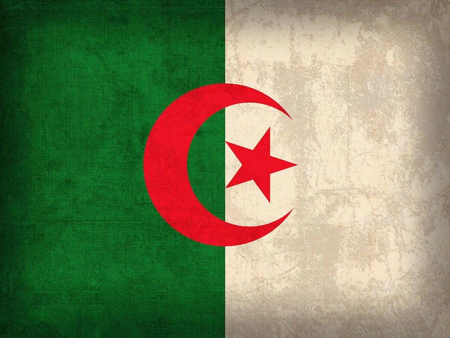 Algeria Flag Vintage Distressed Finish By Design Turnpike Algeria Flag Flag Algerian Flag