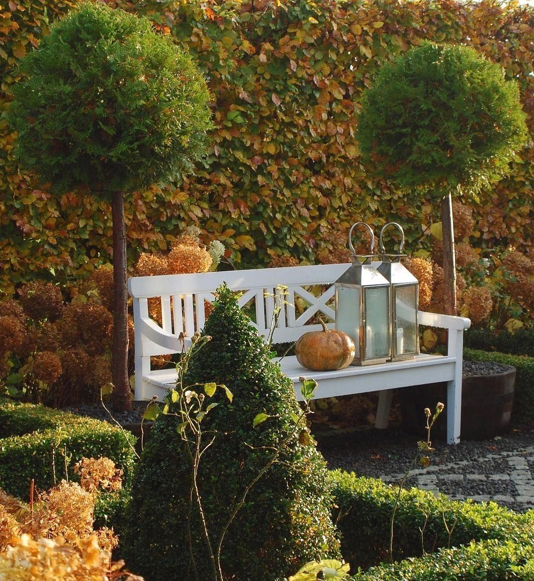Autumn Colors In The Garden . From @gncgarden #gardenning #gardenninglife  #garden #