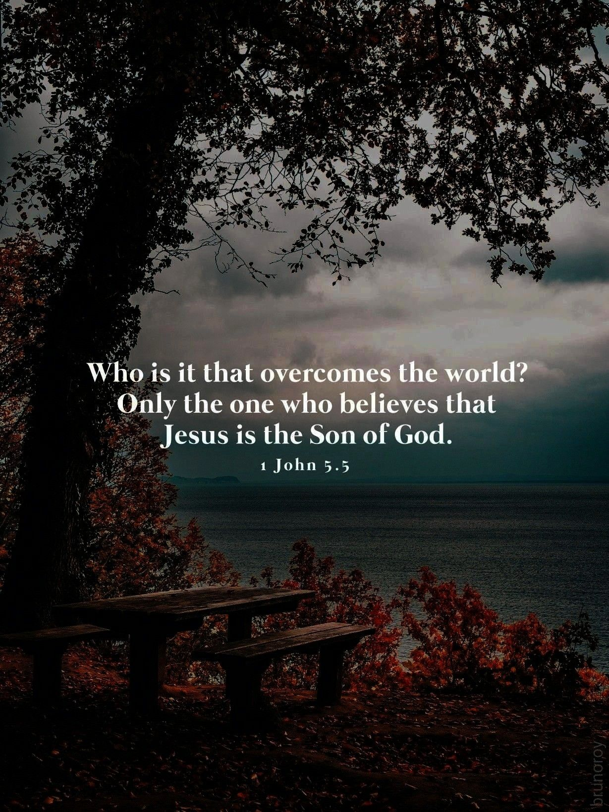 overcomes the world Only the one who believes that Jesus is the Son of God 1 John 55Who is it that overcomes the world Only the one who believes that Jesus is the Son of...