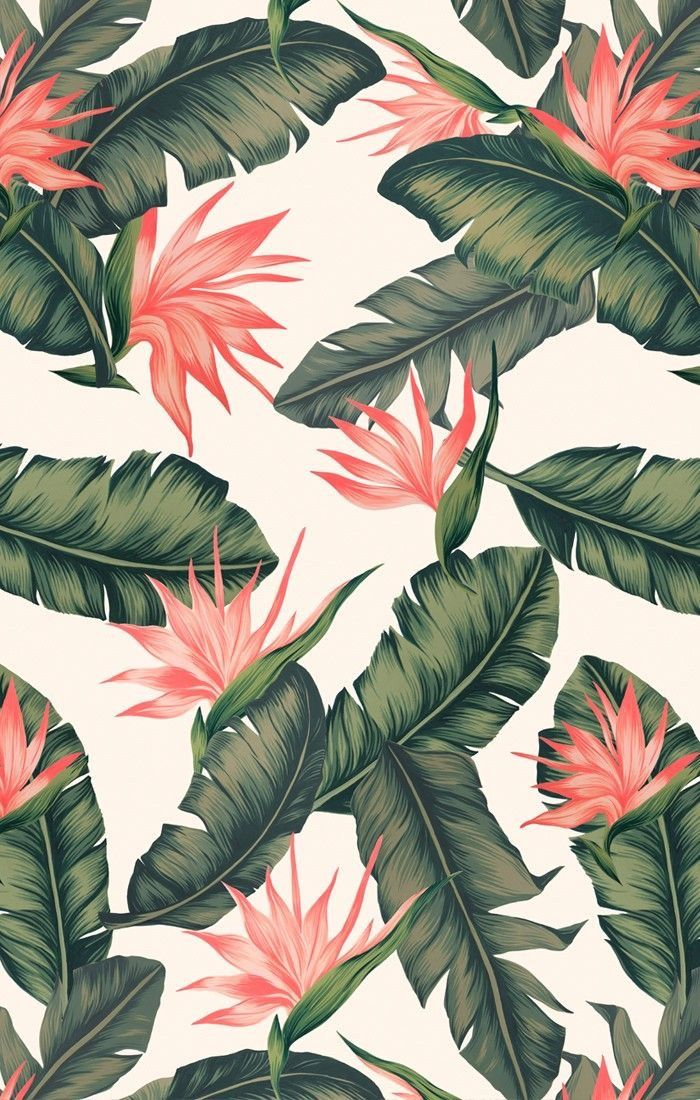 Leaves With Bird Of Paradise Iphone Wallpaper Pattern Wallpaper Phone Wallpaper