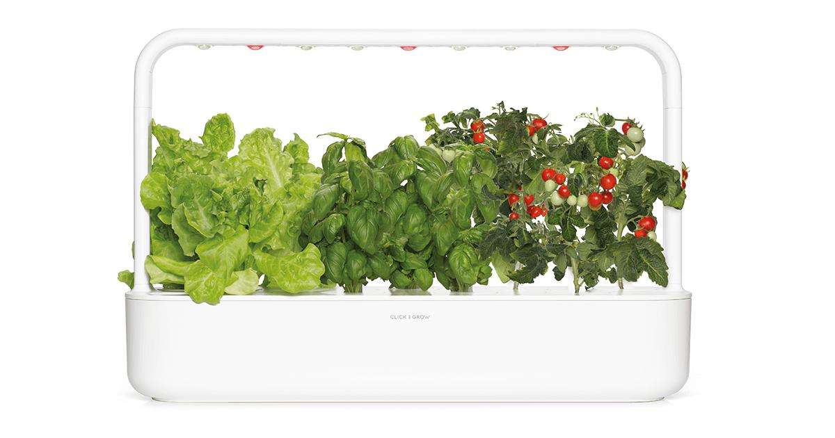 Indoor Herb Gardens and Indoor Gardening Kits | Click ...
