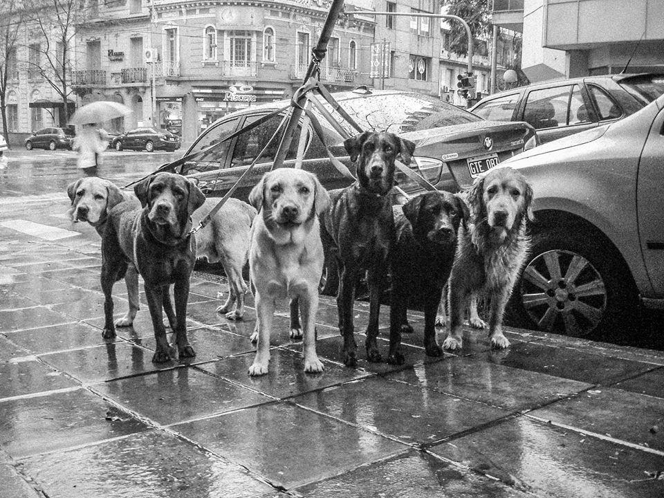 Por las calles de Buenos Aires