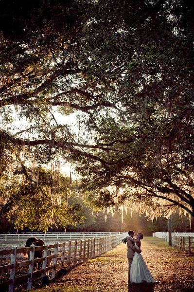 Dade City Wedding At Lange Farm From Elizabeth Davis Photography