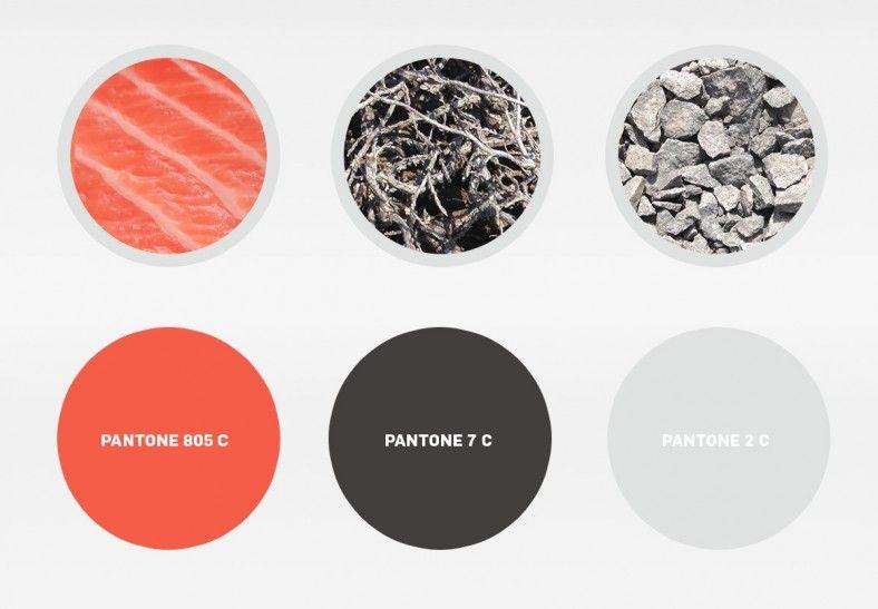 Karma Sushi Colours
