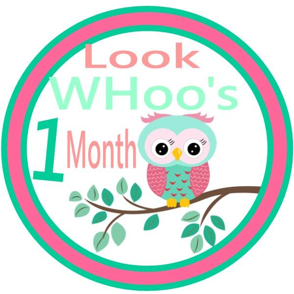 Month-by-Month Photo Stickers for a hanging picture display