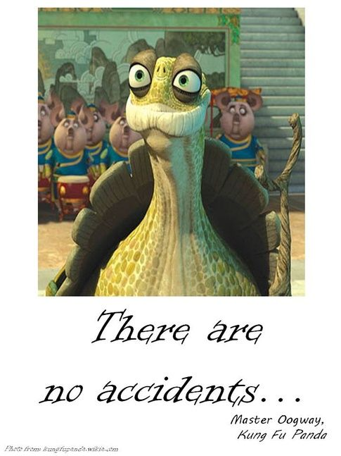 No Accidents Mini Graphic Novels Pinterest Master Oogway Kung