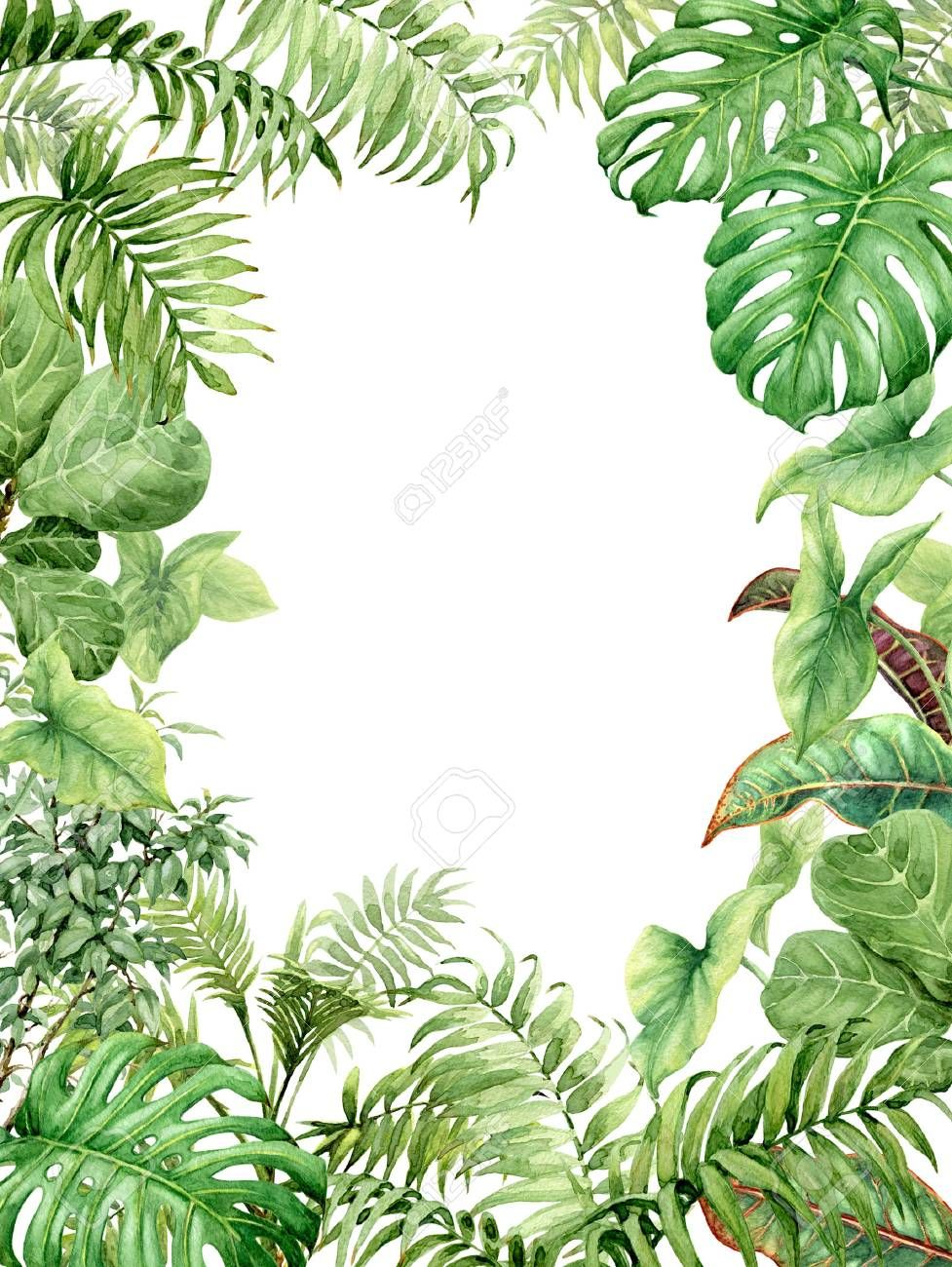 Hand Drawn Branches And Leaves Of Tropical Plants Natural Green Background With Space For Text Watercolor Green Backgrounds Watercolor Plants Tropical Plants