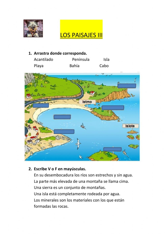 Actividad Online De Los Paisajes Para Segundo De Primaria Puedes Hacer Los Ejercicios Online O De Actividades De Geografía Ciencias Sociales Tipos De Paisajes