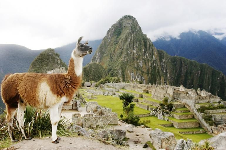 """Machu Picchu (Peru)  It has been some five centuries since the fall of the Inca Empire and one century since U.S. historian Hiram Bingham """"rediscovered"""" the civilization's most famous citadel, Machu Picchu, and history has come full circle."""