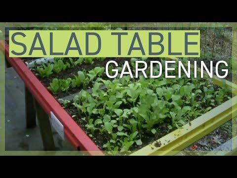 129e54959c6d55fe40b5530ada2e2f9a - How To Become A Master Gardener Maryland