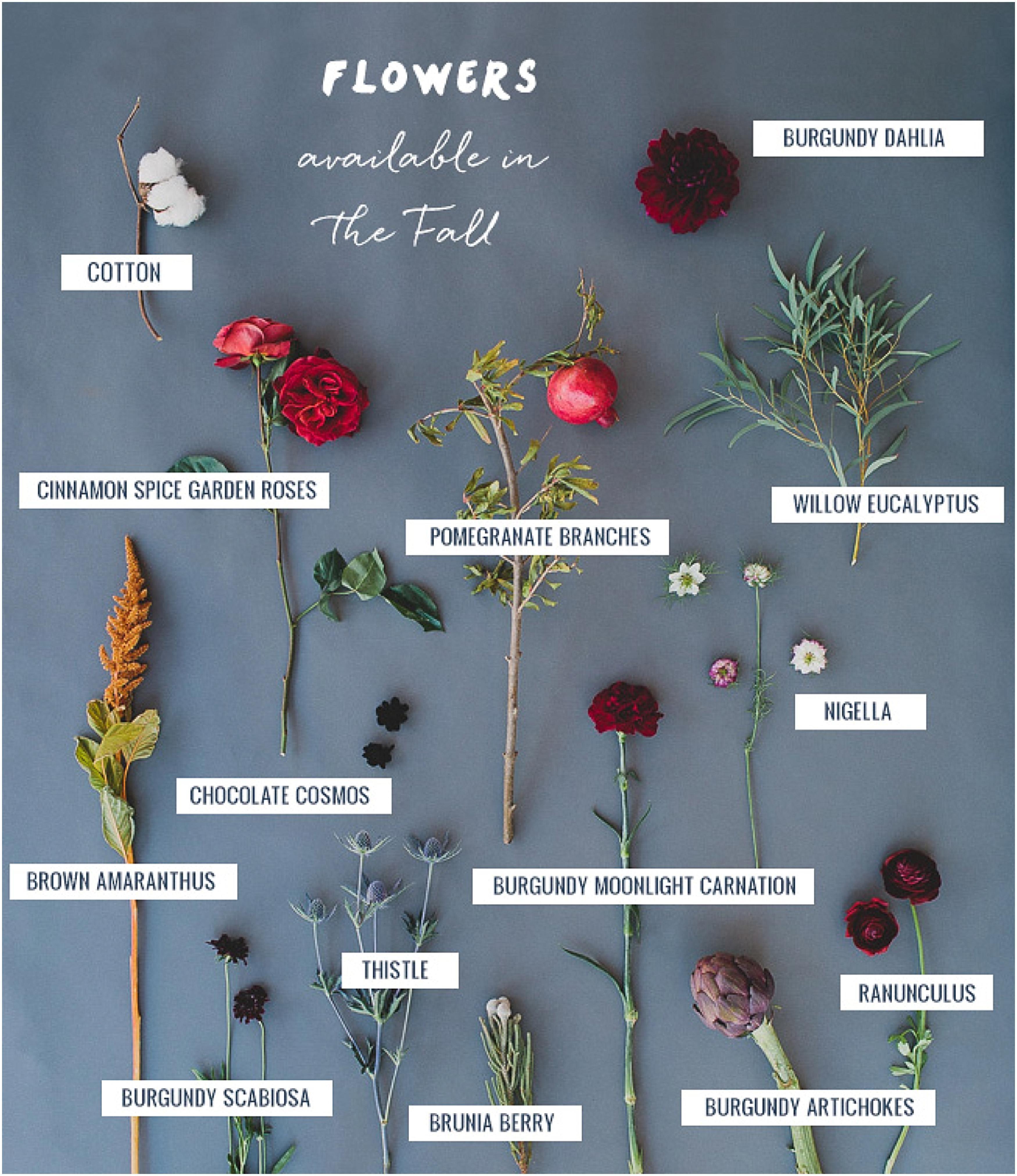 Outdoor November Wedding Flowers: Seasonal Flower Guide: Fall