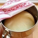 Cover the bowl and let the dough rise in a warm spot until doubled in bulk, about one hour.