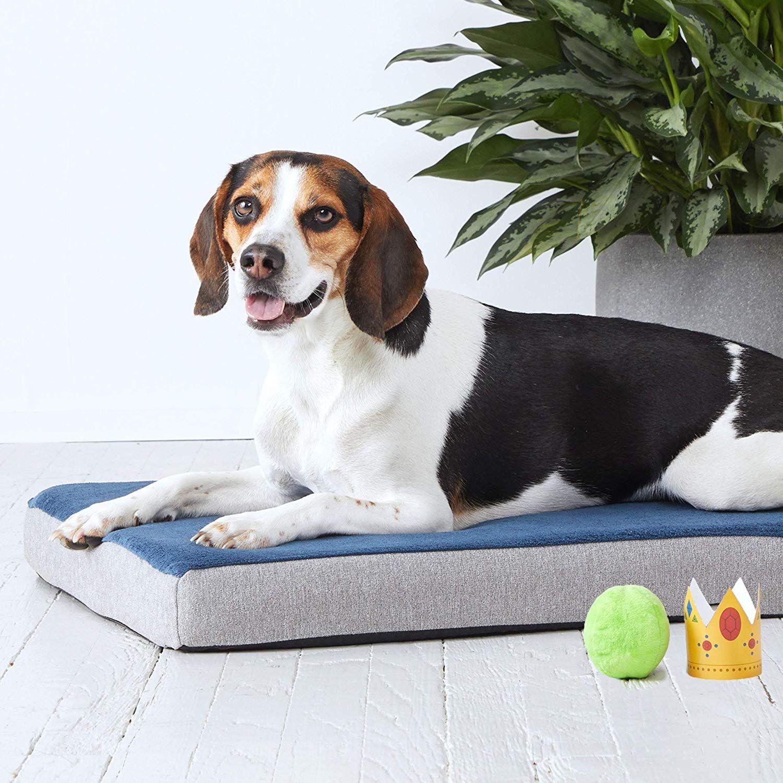 BarkBox Memory Foam Dog Bed Multiple Sizes/Colors; Plush