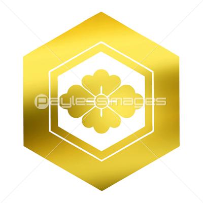 亀甲花菱 きっこうはなびし の写真 イラスト素材 Gf1420531001