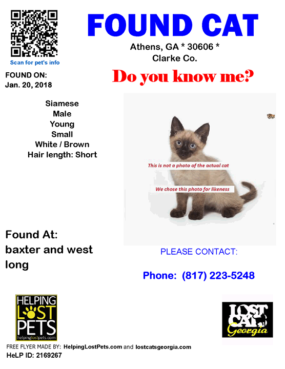 Found Cat Athens GA. Jan. 20 2018 Closest Intersection