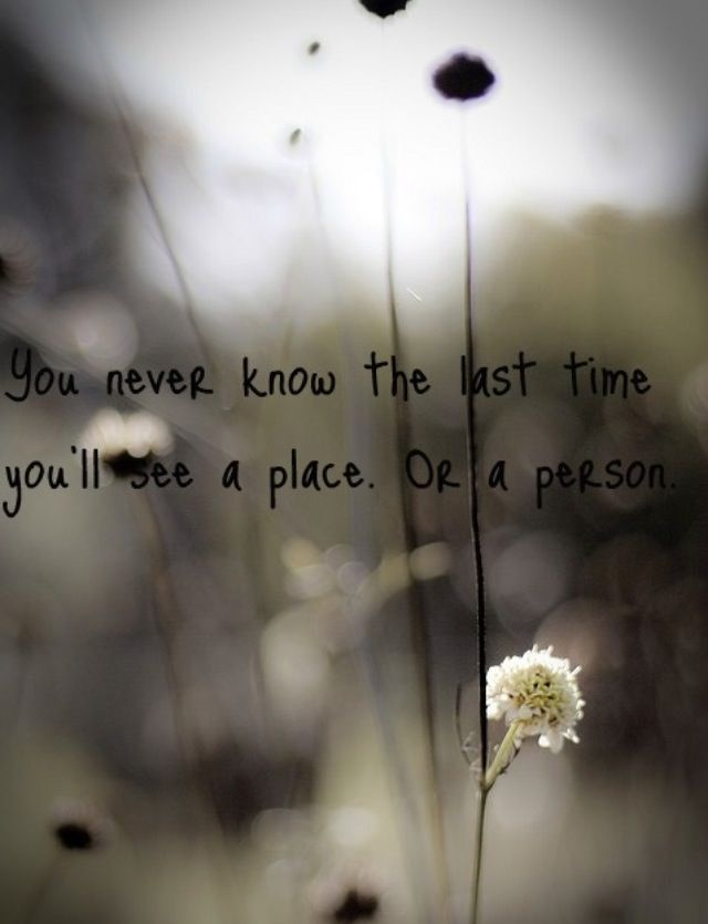 A Friend Passed Away Today From Incurable Illness She's A Couple Of Best Quotes About Losing A Loved One Too Soon