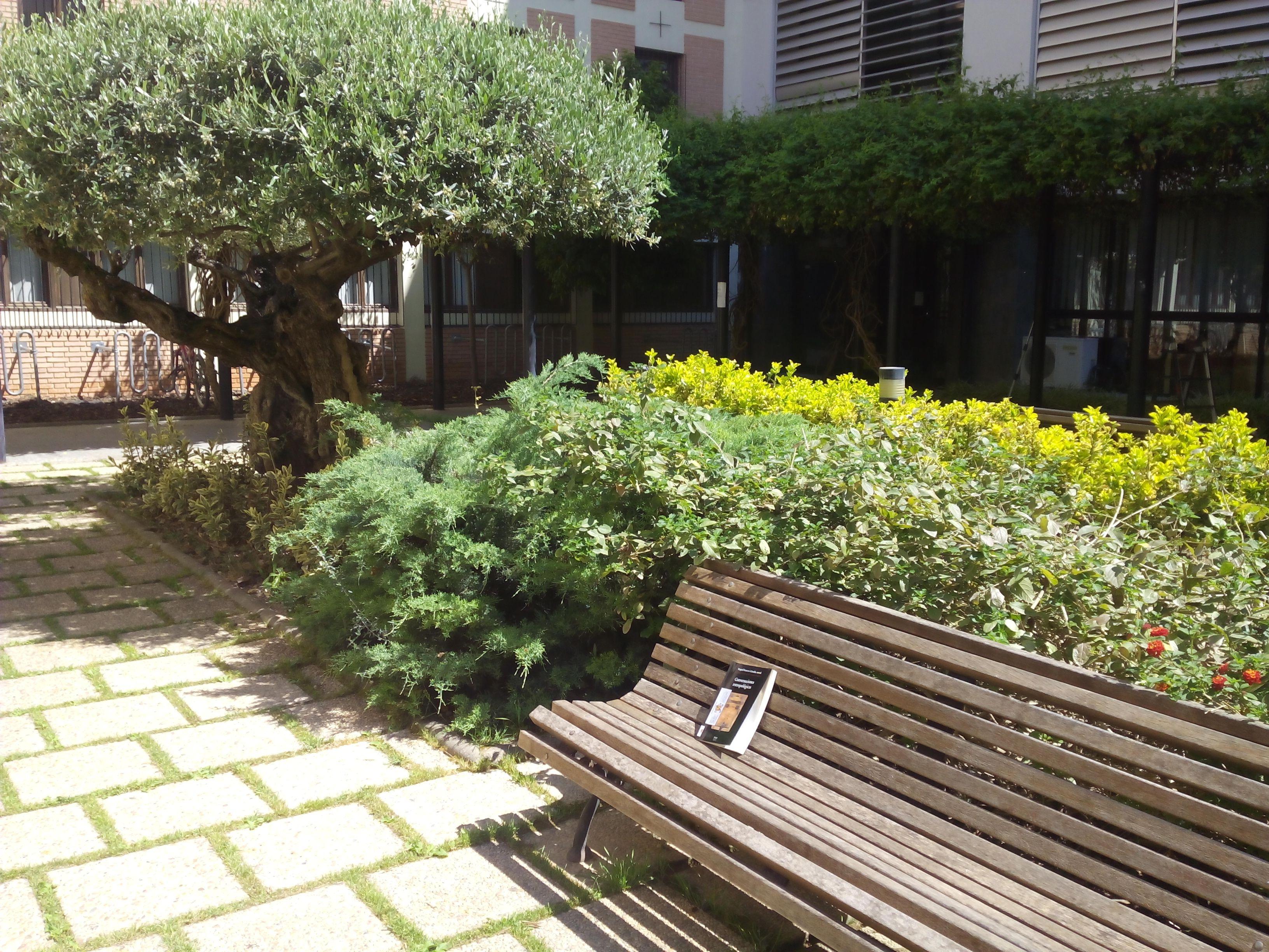 alliberament de Conversaciones antropológicas en el pati de l'edifici de Santa Úrsula de la Universitat Catòlica