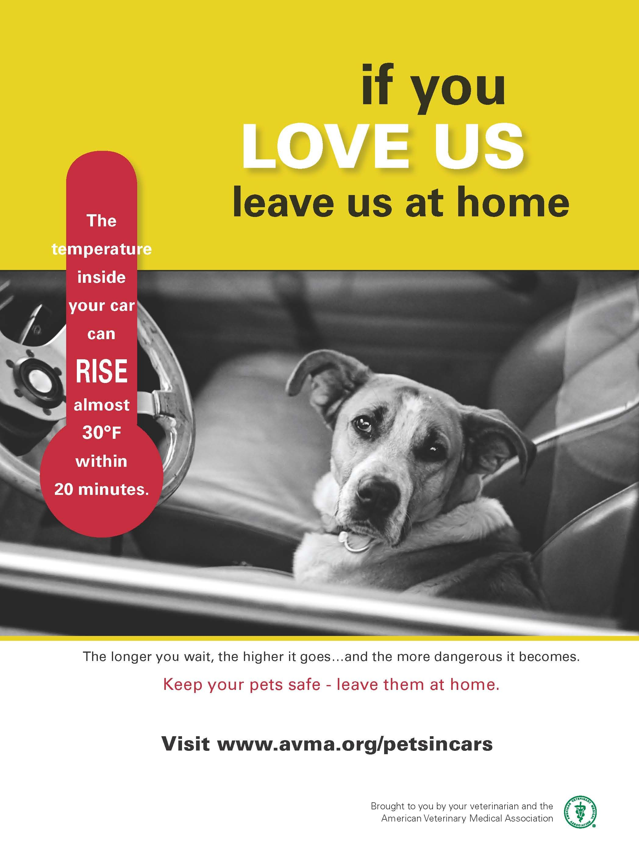 Pets and hot cars don't mix. Please leave your pets at
