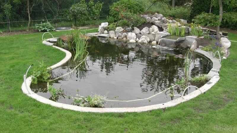 Construction de bassin bassins de jardin pinterest construction - Construction bassin de jardin ...