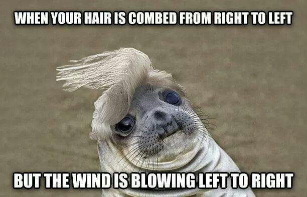 Bad Hair Day Funny Memes Awkward Moments Funny Baby Faces
