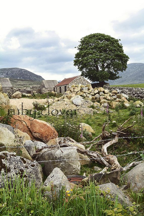 Cottage By The Tree Mourne Mountains Co Down By Rubyclover Art Collectibles Photography Color Norn Iron Driftwood Photo Old Rusty Tire Ideal Country S