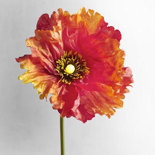 Pier 1 imports bright blooms faux poppy pre lit stem 24 aud pier 1 imports bright blooms faux poppy pre lit stem 24 aud mightylinksfo