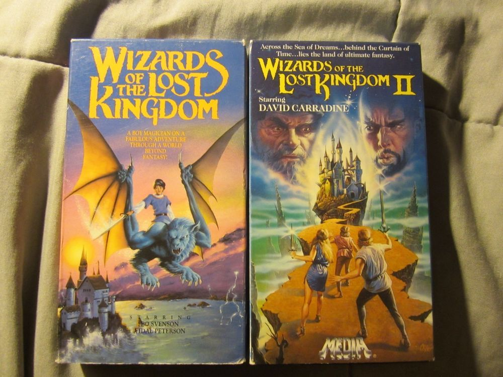 Wizards Of The Lost Kingdom 1 And 2 Vhs Lot 2 Rare Fantasy No Dvd Oop Vhs Dvds Movies Dvd