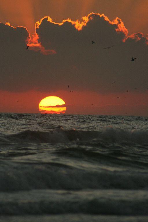Like the clouds on top of the sun IMG_6402 Sarasota Siesta Key