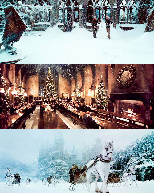 """""""One can never have enough socks,"""" said Dumbledore."""