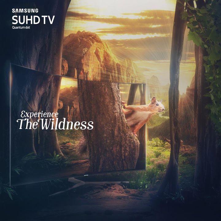 عيش تجربة البرية مع تليفزيون #سامسونج #SUHD QuantumDot #هو_ده_التلفزيون للمزيد: http://goo.gl/bErH5t  Experience the wild from the comfort of your home with #Samsung #SUHD with #QuantumDot and it's life-like quality. #ThisIsTV Learn More: http://goo.gl/bErH5t