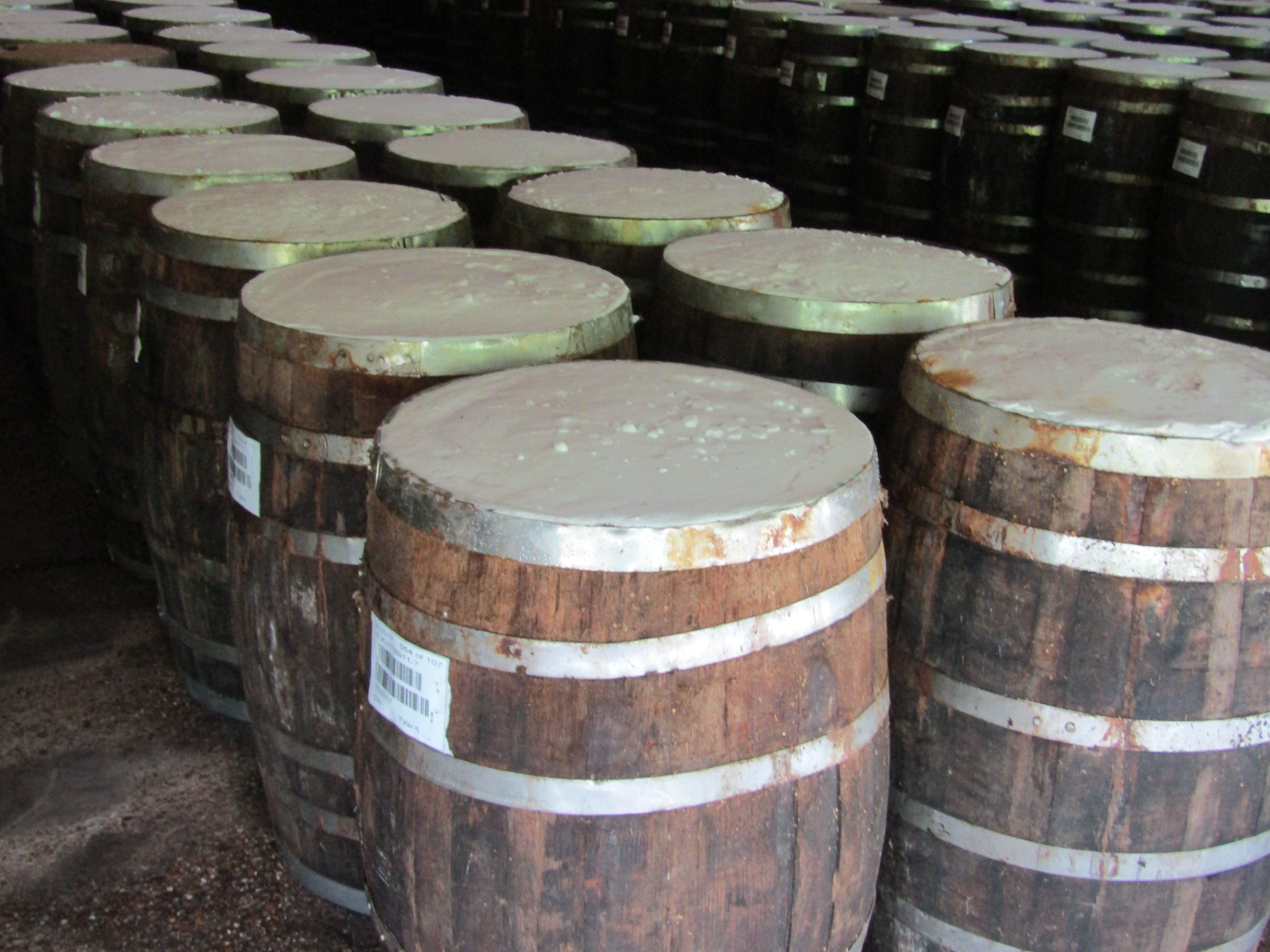 Tabasco Sauce Pepper Mash Being Aged In White Oak Barrels Salt