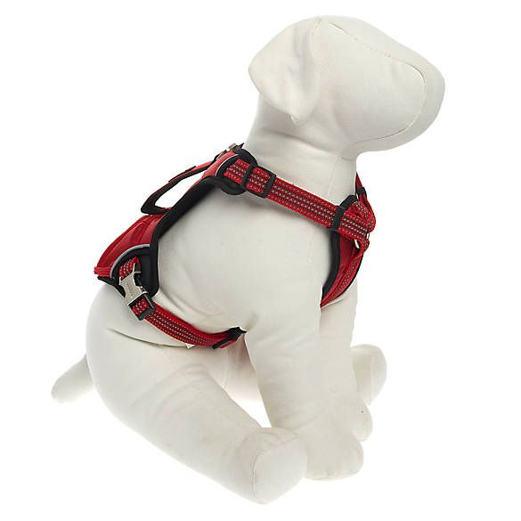 Kong Reflective Pocket Harness Harnesses Petsmart Pocket