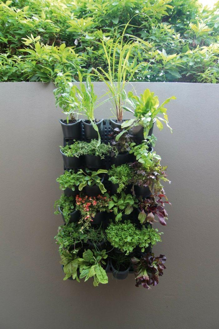 Pflanzenwand Bauen schwarze wand mit ein paar eingebauten blumentöpfen pflanzenwand
