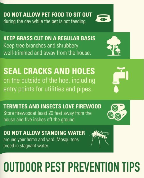 The Only Thing That Can Ruin Your Outdoor Gathering Is The Presence Of Pests In Your Backyard Here Are Some Pest Prevention Food Animals Business Infographic