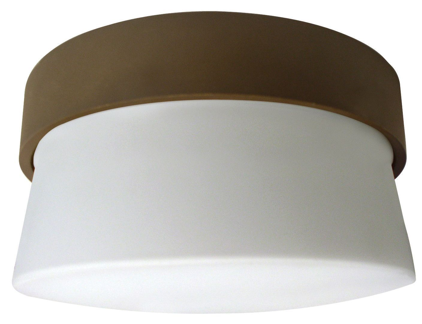 1 Light Mini Flush Mount
