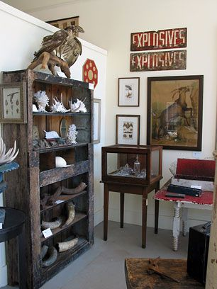 collection of curiosities.
